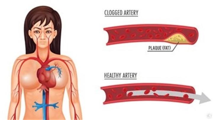 أبرزها سرطان الثدى ومشاكل القلب.. فاكهة غير متوقعة تحارب 7 أمراض