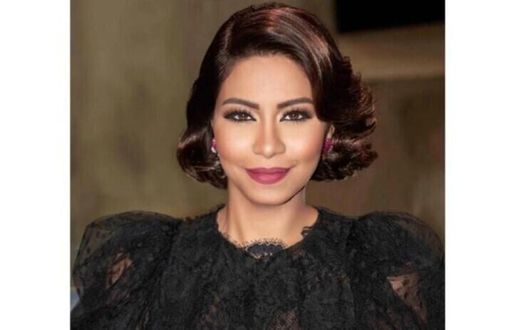 أجمل تسريحات شعر شيرين عبد الوهاب في عيد ميلادها
