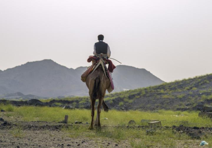 تعرّف على أبرز المعالم السياحية في المملكة العربية السعودية