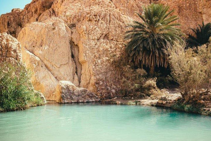 السياحة في تونس: توزر تستحق الزيارة
