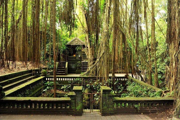 الأماكن السياحية في بالي للعوائل
