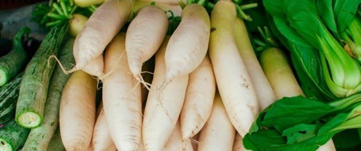 الفجل الأبيض: أهم الفوائد الصحية والقيم الغذائية