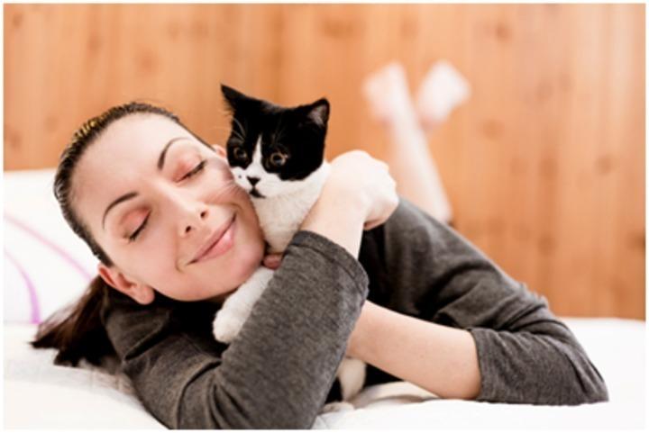 مرض القطط و العقم لدى السيدات