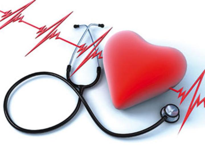 هل تستطيع الديدان حماية القلب والأوعية الدموية؟