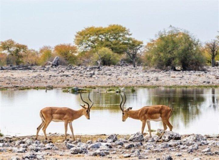 لعشّاق الحياة البرية... إخترنا أروع الوجهات السياحية!