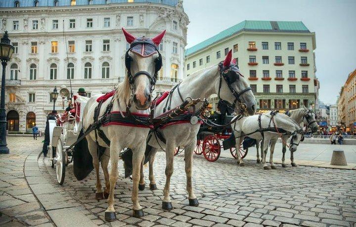 السياحة في النمسا خلال الصيف