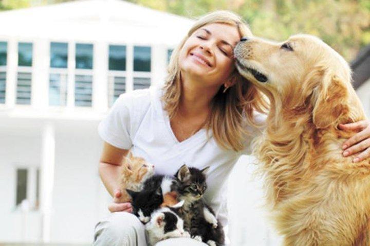 التعامل مع مشاكل تربية الحيوانات الأليفة بين الأزواج
