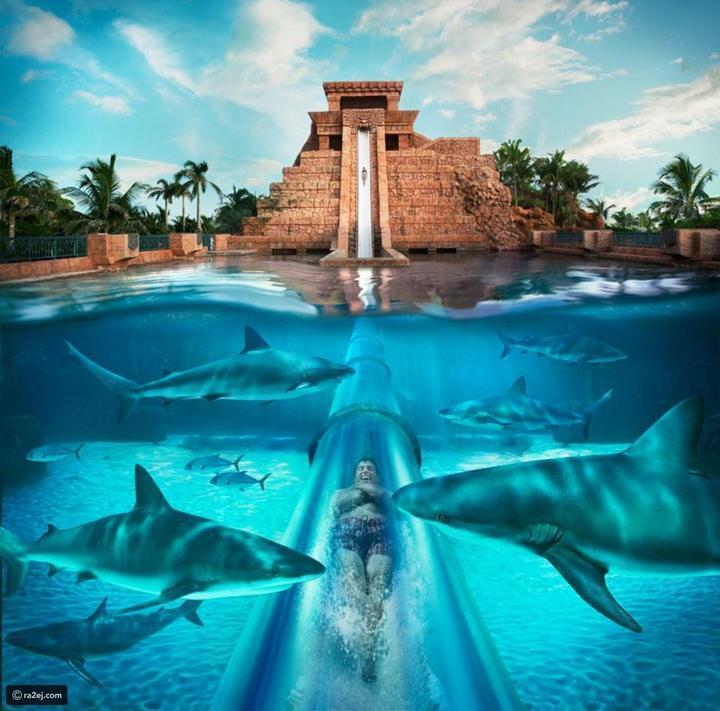 صور مغامرة ممتعة.. أروع الألعاب المائية في العالم 3 منها في دولة عربية