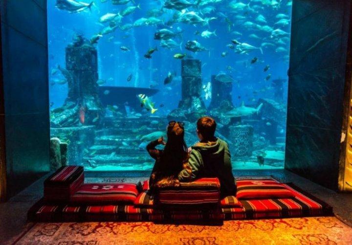 اروع انشطة سياحية صيفية لشهر العسل في الامارات