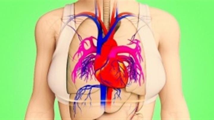 احذري.. 6 علامات مبكرة لإصابتك بأمراض القلب