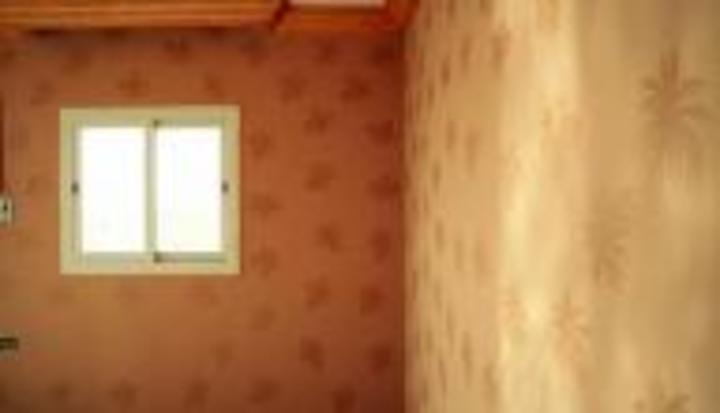أنواع دهان الجدران