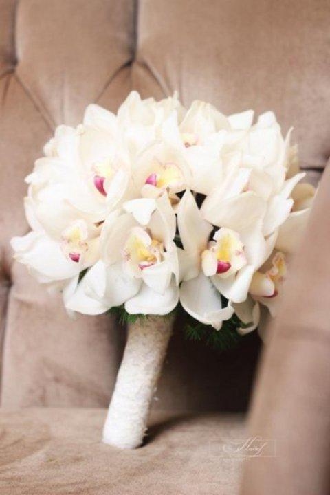 المصورة هديل الشريف : ابتسامة العروس سر جمال صورها