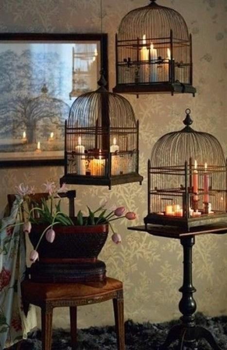 ديكورات ولا أروع بأقفاص العصافير تزيّن أرجاء منزلك!