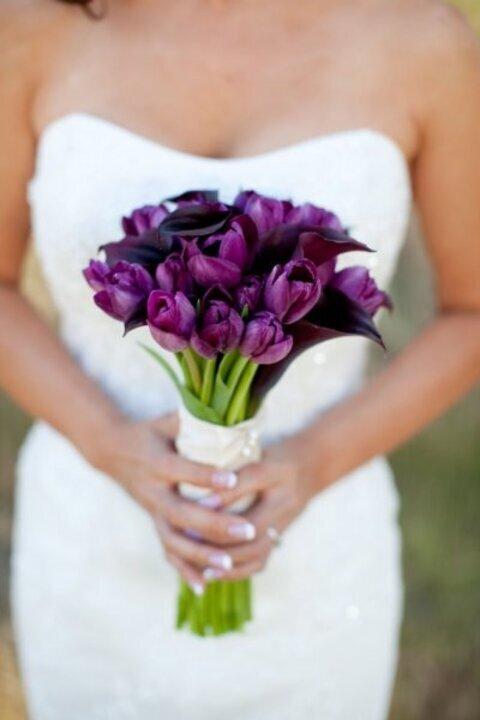 مسكات عروس توليب بنفسجي 2019