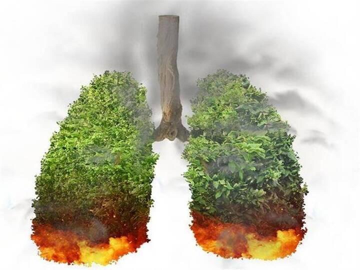ما مخاطر استنشاق انبعاثات الحرائق على الصحة؟