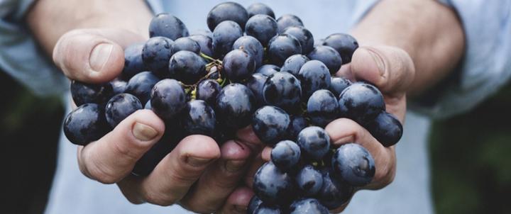 عصير العنب الطازج: فوائد هائلة لقلبك وصحتك