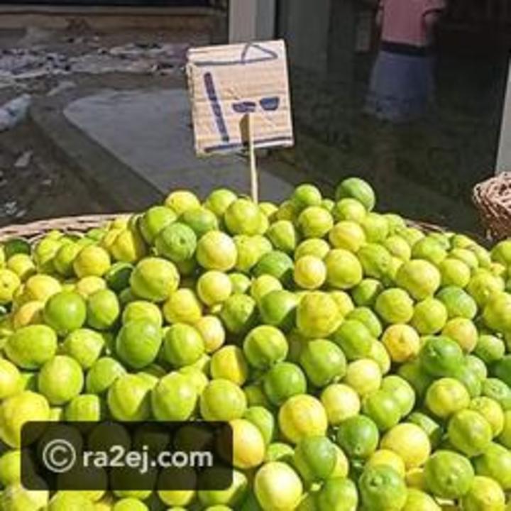 بعد ارتفاع ثمنه إلى 100 جنيه.. تعرف على بدائل الليمون في الطعام