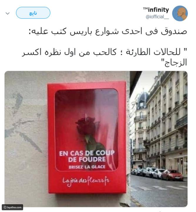 فيديو وصور: عند الوقوع بالحب اكسر الزجاج.. أين يوجد صندوق طوارئ الحب؟