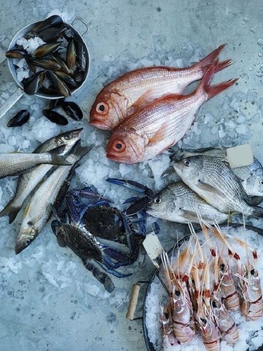 تحضير السمك بالفرن
