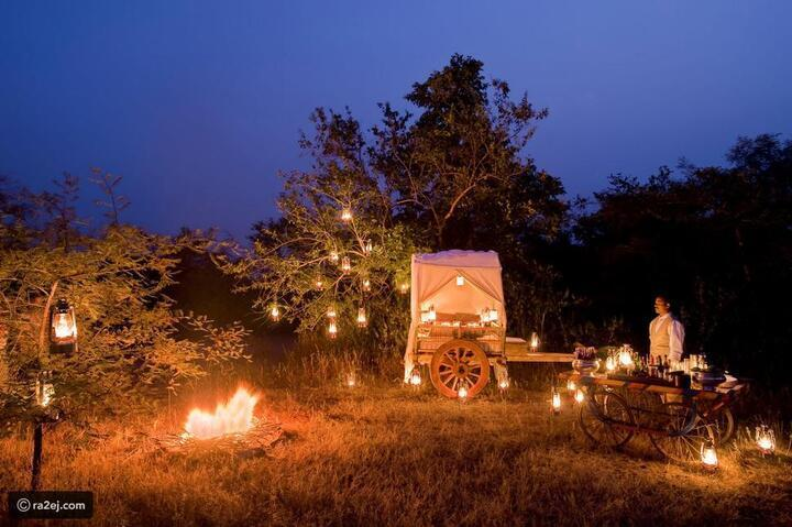 تجربة سفاري مميزة مع قبيلة الباردهي في الهند