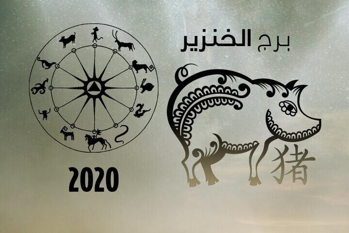 ما الذي يحمله كل شهر من أشهر العام 2020 لبرج الخنزير؟